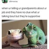 Telling Your Grandparents