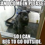 can i come in please