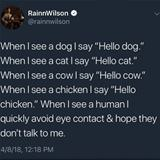 dogs and cats are so much better