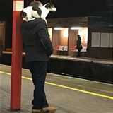 waiting for the train together