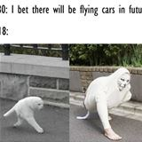 bet there will be flying cars