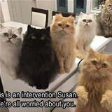 we are worried susan