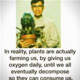 in reality plants farm us