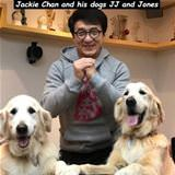 jackie chans dogs