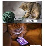 only 90s cats