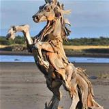awesome beach horse