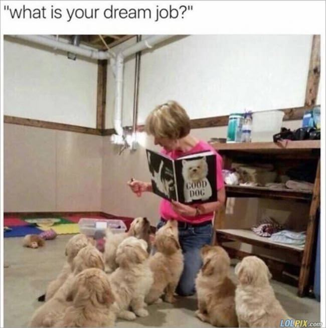 what is your dream job
