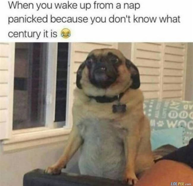wake up from a nap