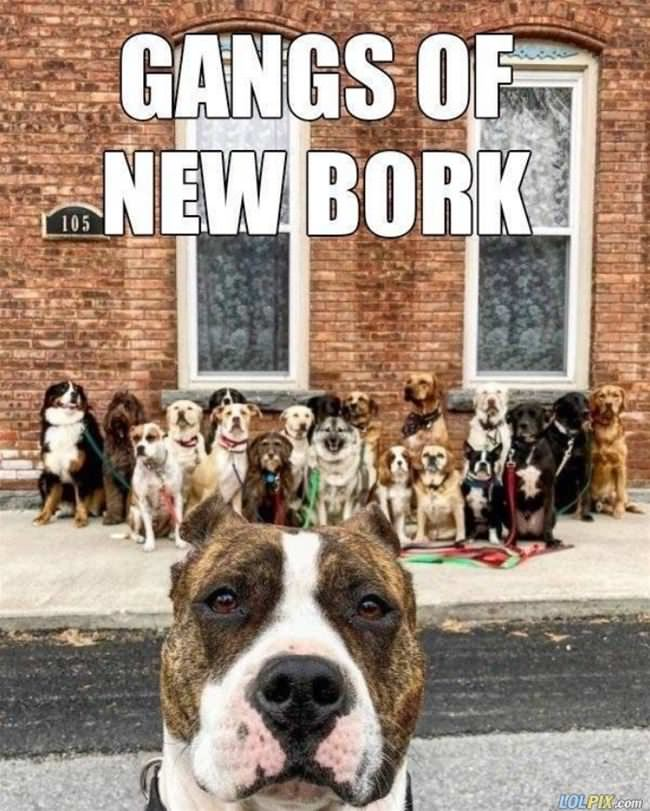 the gangs of new bork