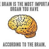 according to your brain