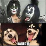 the kiss dogs