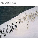 a war in antarctica