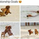 some relationship goals
