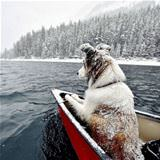 canoeing out in the snow