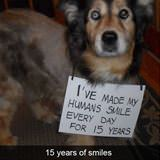 15 years of smiles
