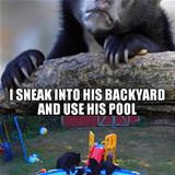 when my neighbor is not home