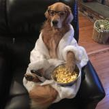 munching on some popcorn