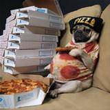 pizza and chill